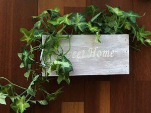 簡単DIY鉢植えをリメイク