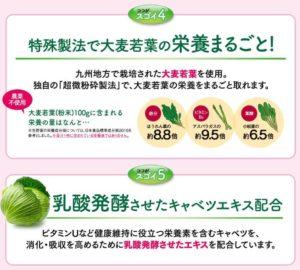 ヘルスマネージ乳酸菌青汁5