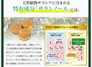 食後の血糖値説明2